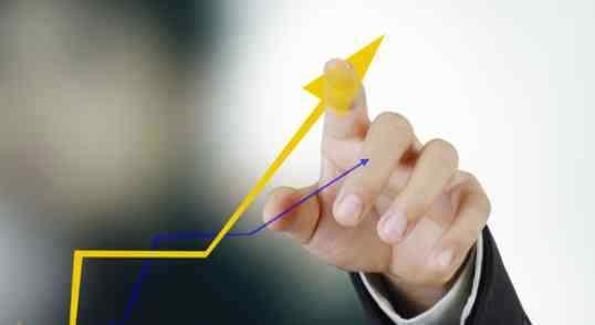 Alternation of Company Capital
