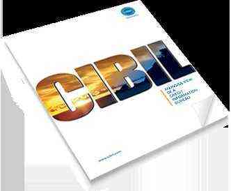 How to read your CIBIL score?