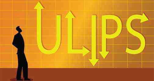 Types of Unit Linked Insurance Plans (ULIPs)
