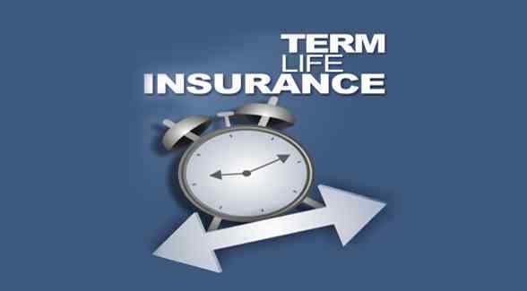 What is a Term Life Insurance Policy?