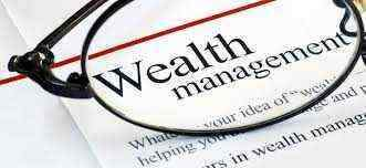 What is meant by Wealth Management?